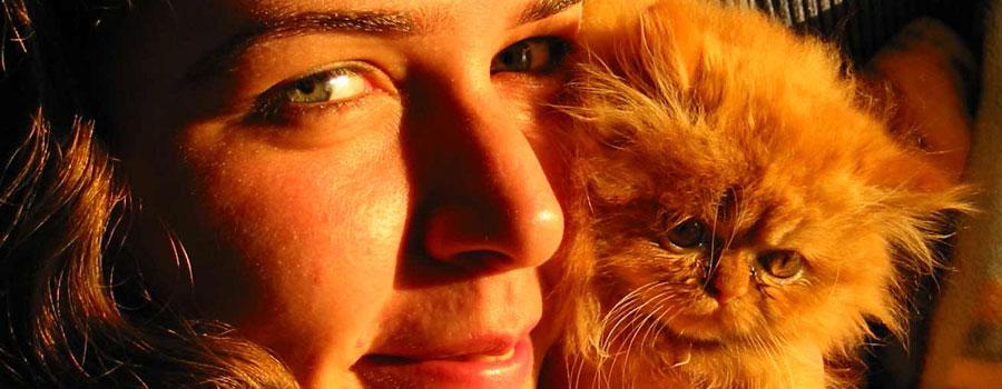 Erkennen Katzen ihre Besitzer?