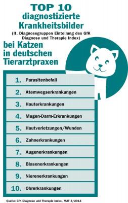 Laut GfK Diagnose und Therapie Index sind das die 10 am häufigsten diagnostizierten Krankheiten bei Katzen. Grafik: BfT