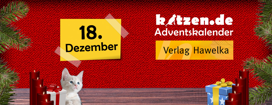 Gewinnspiel: Katzen-TV – Fernsehen für Fellnasen (Compilation, Vol. 1 & 2)