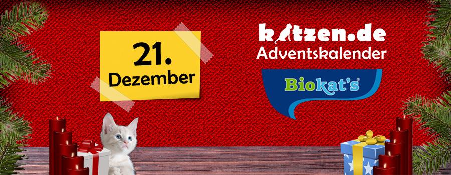 Gewinnspiel: Katzenstreu und Deo Pearls von Biokat's