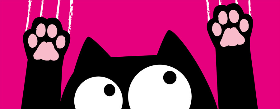 Gewinnspiel: Ed, the Cat – Katz...