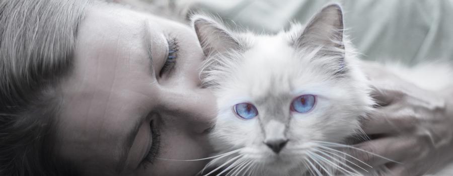 Gewinnspiel: Katzen und ihre Frauen