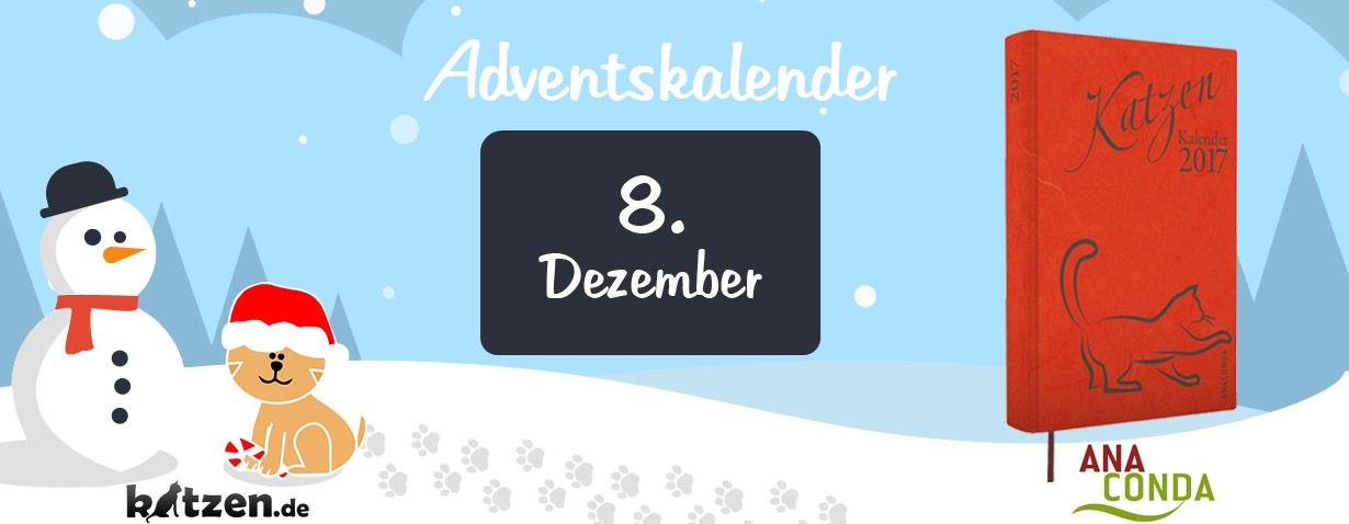 Gewinnspiel: Katzen Kalender 2017