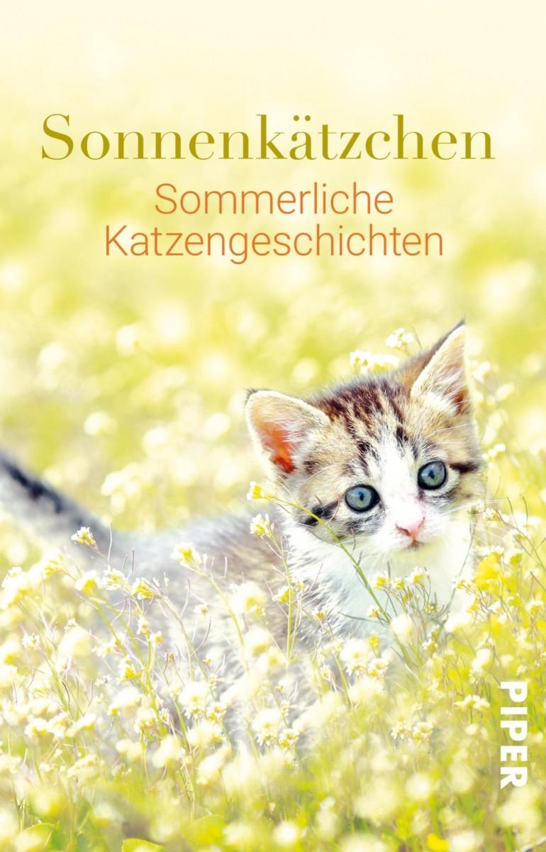 Sonnenkätzchen - Sommerliche Katzengeschichten