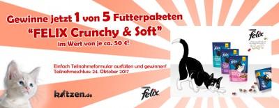 Gewinnspiel: Futterpakete von FELIX im Wert von je 50 EUR!