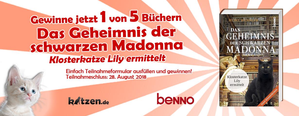 Gewinnspiel: Das Geheimnis der schwarzen Madonna - Klosterkatze Lily ermittelt