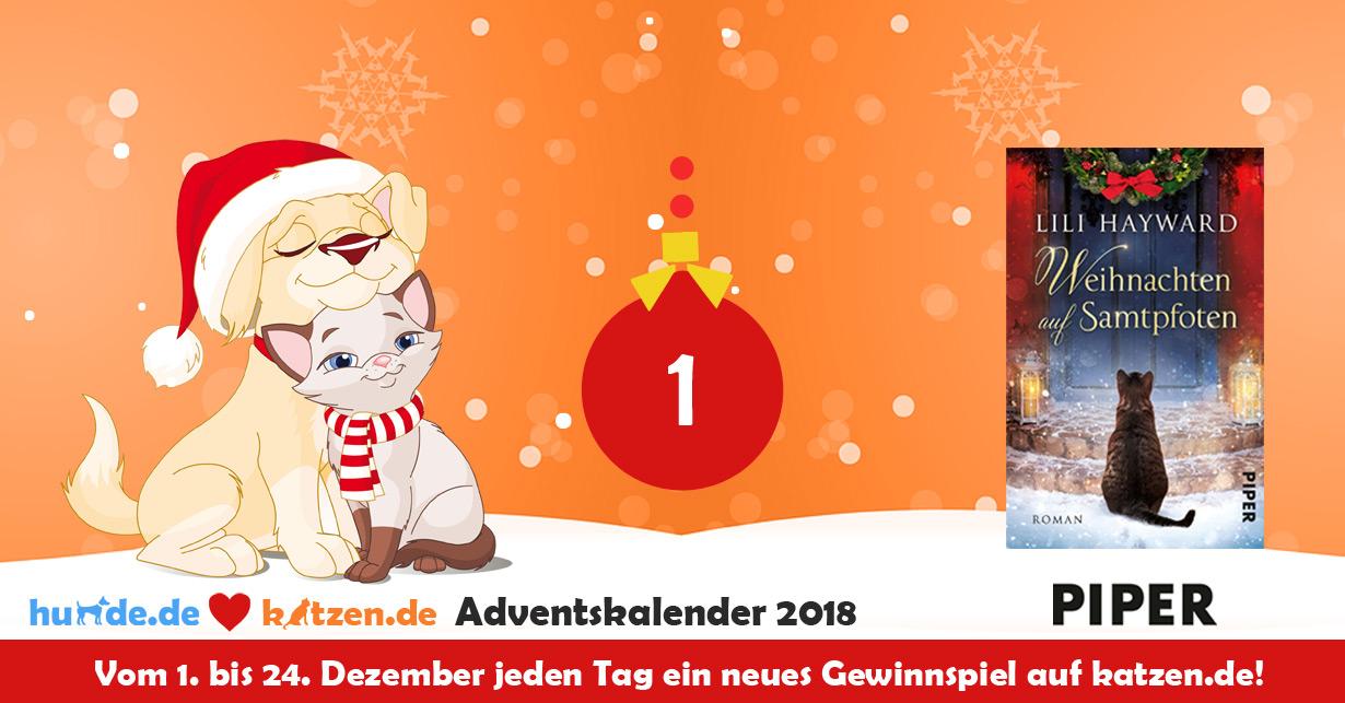 Www Otto De Gemeinsam Weihnachten Gewinnspiel