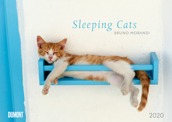 "Bruno Morandi - Wandkalender ""Sleeping Cats 2020"""