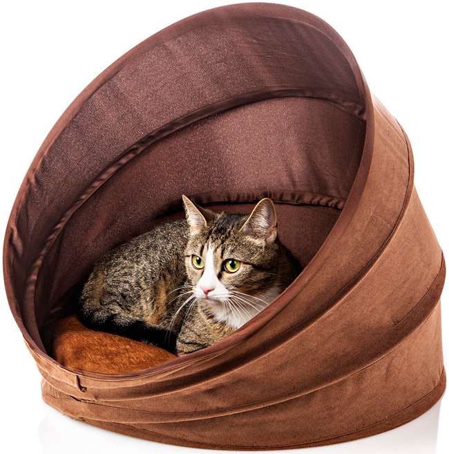 Katzenhöhle, Medium von Weltbild