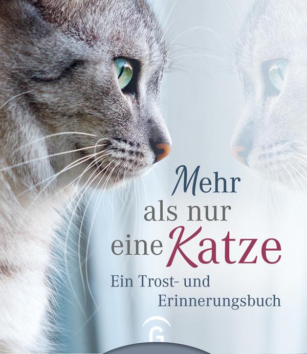 Kristin Hoffmann: Mehr als nur eine Katze - Ein Trost- und Erinnerungsbuch